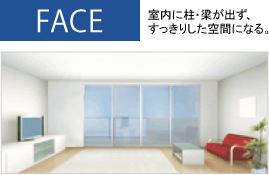 FACE構造