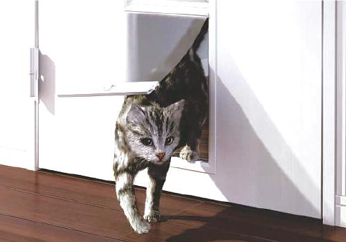ペットが自由に出入りできるくぐり戸付きのリビングドア。