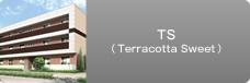 TS(Terracotta Sweet)